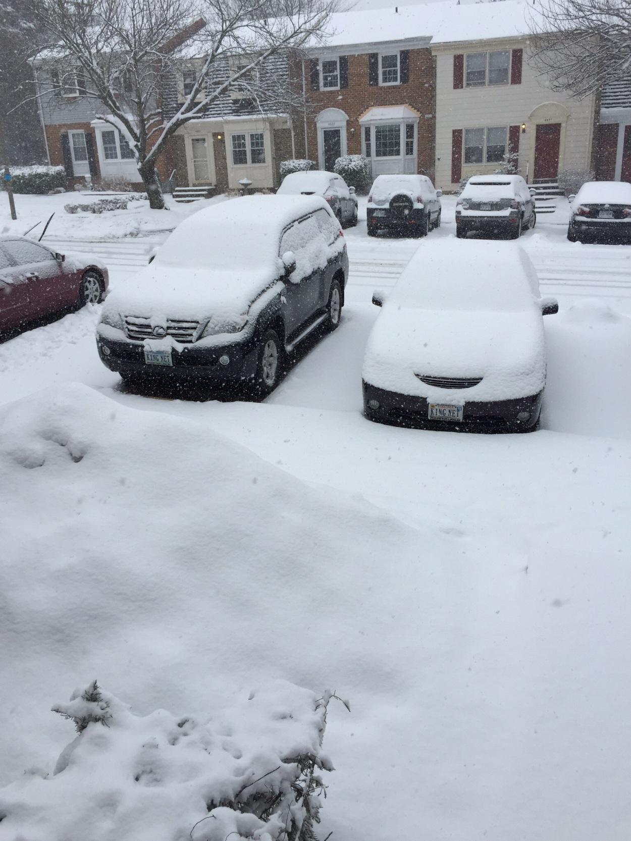 QUE.COM Snow in March